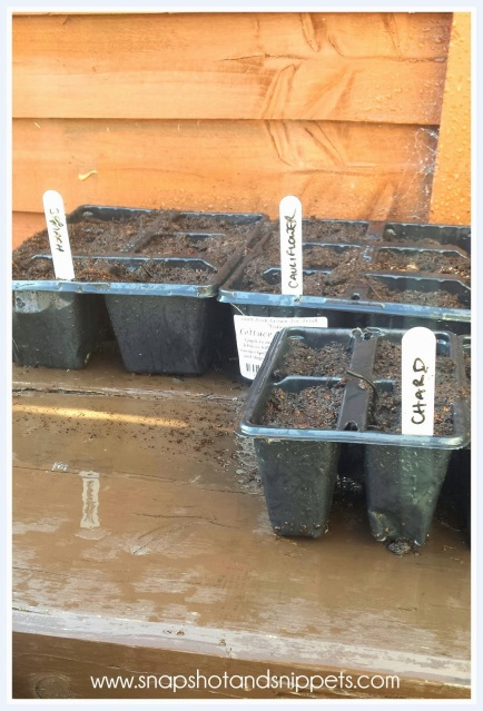 pots labelled for winter